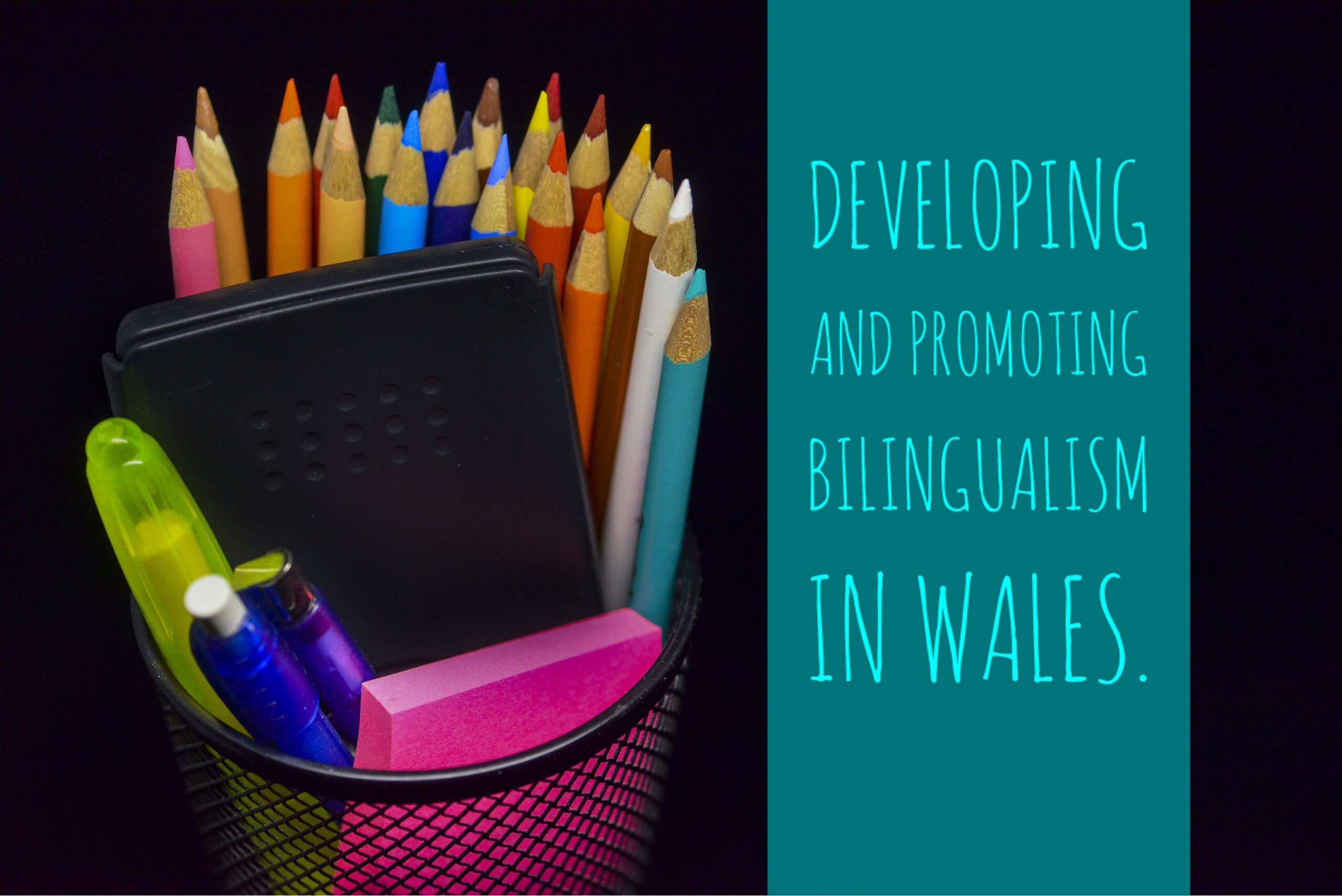 Developing and promoting bilingualism in Wales.