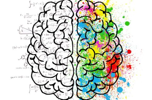 Embracing Cognitive Psychology in Education